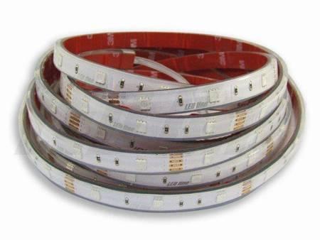 Taśma LED line 150 SMD 5060 12V RGB w osłonie silikonowej IP67 5 metrów