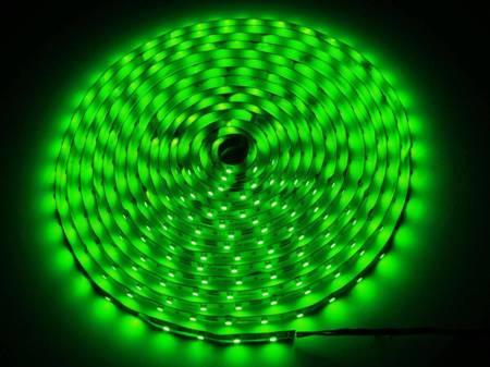 Taśma LED line 300 SMD 3528 zielona 5 metrów